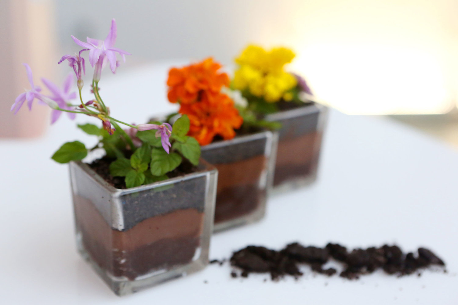 Edible Flowers in a bed of Oreo Crumble, Chocolate Mousse & Chocolate Cake