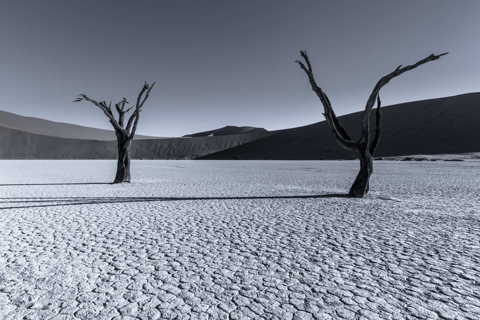 """Distraction"", Namibia"