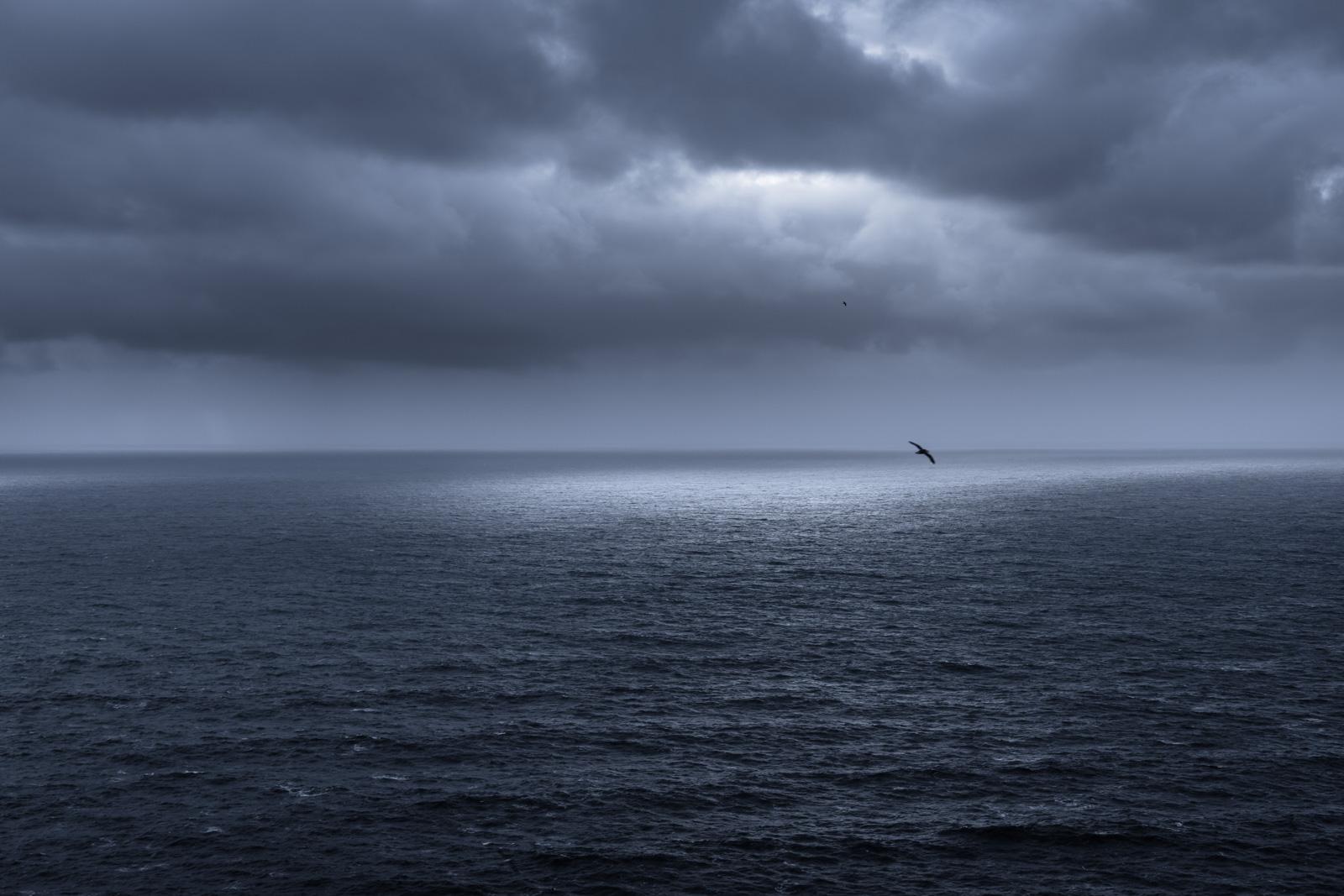"""Free as a Bird"", Iceland"