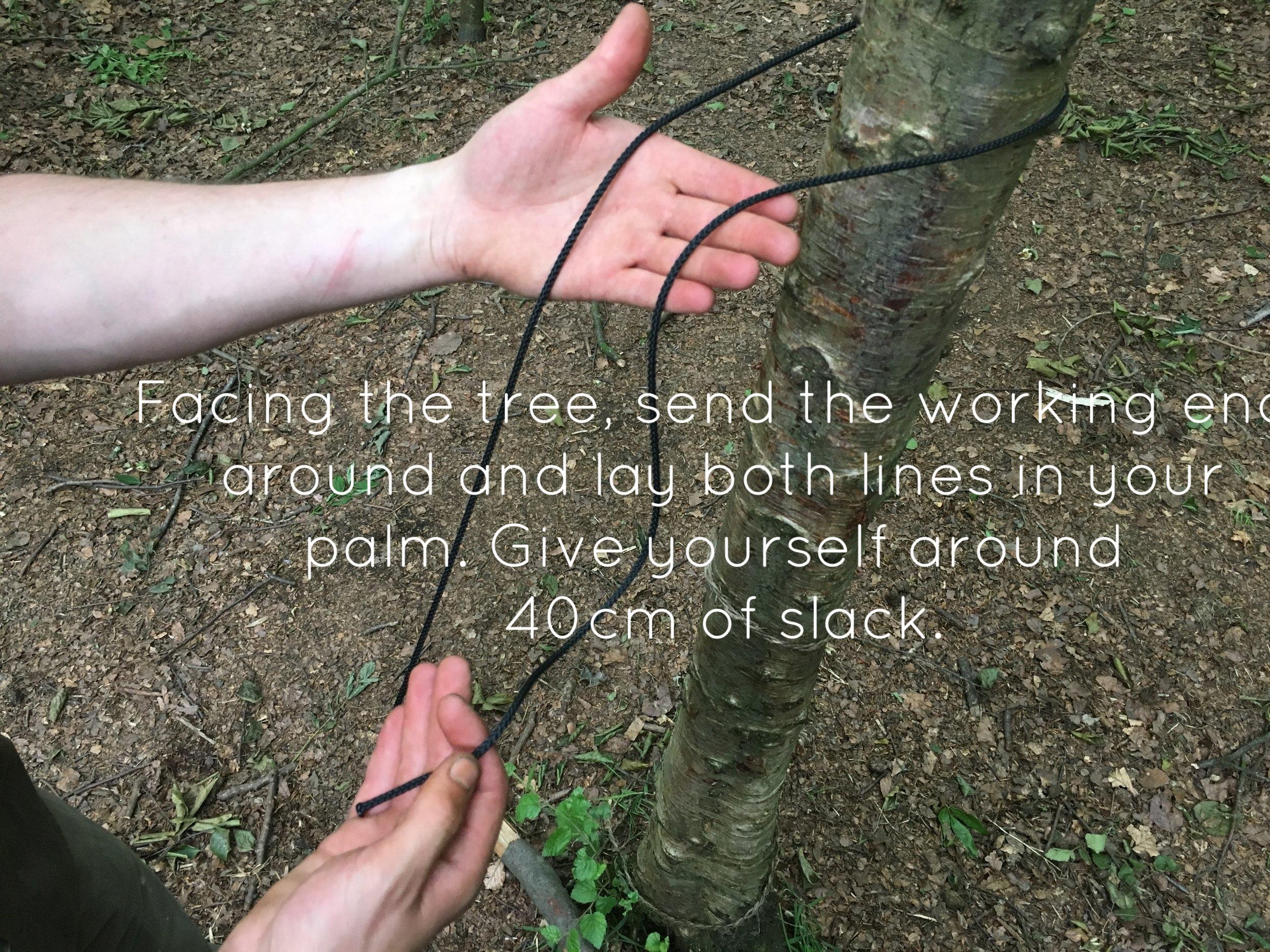 bushcraft knot