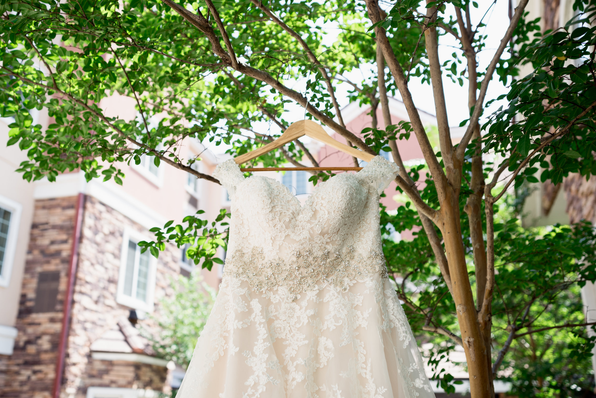 Lenters Wedding-2.jpg