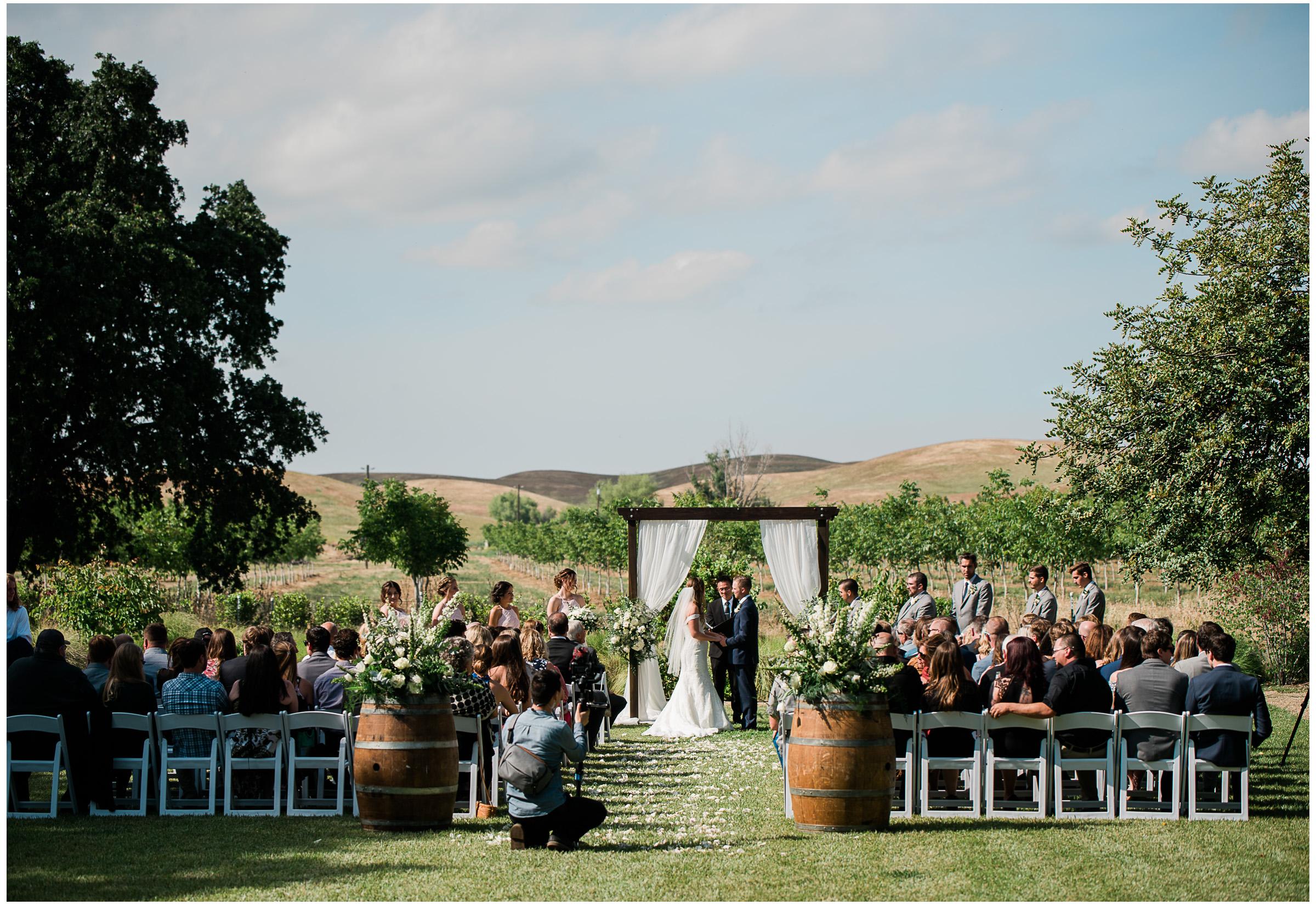 Winters Wedding - Sacramento Photographer - Field & Pond - Justin Wilcox Photography - 27.jpg