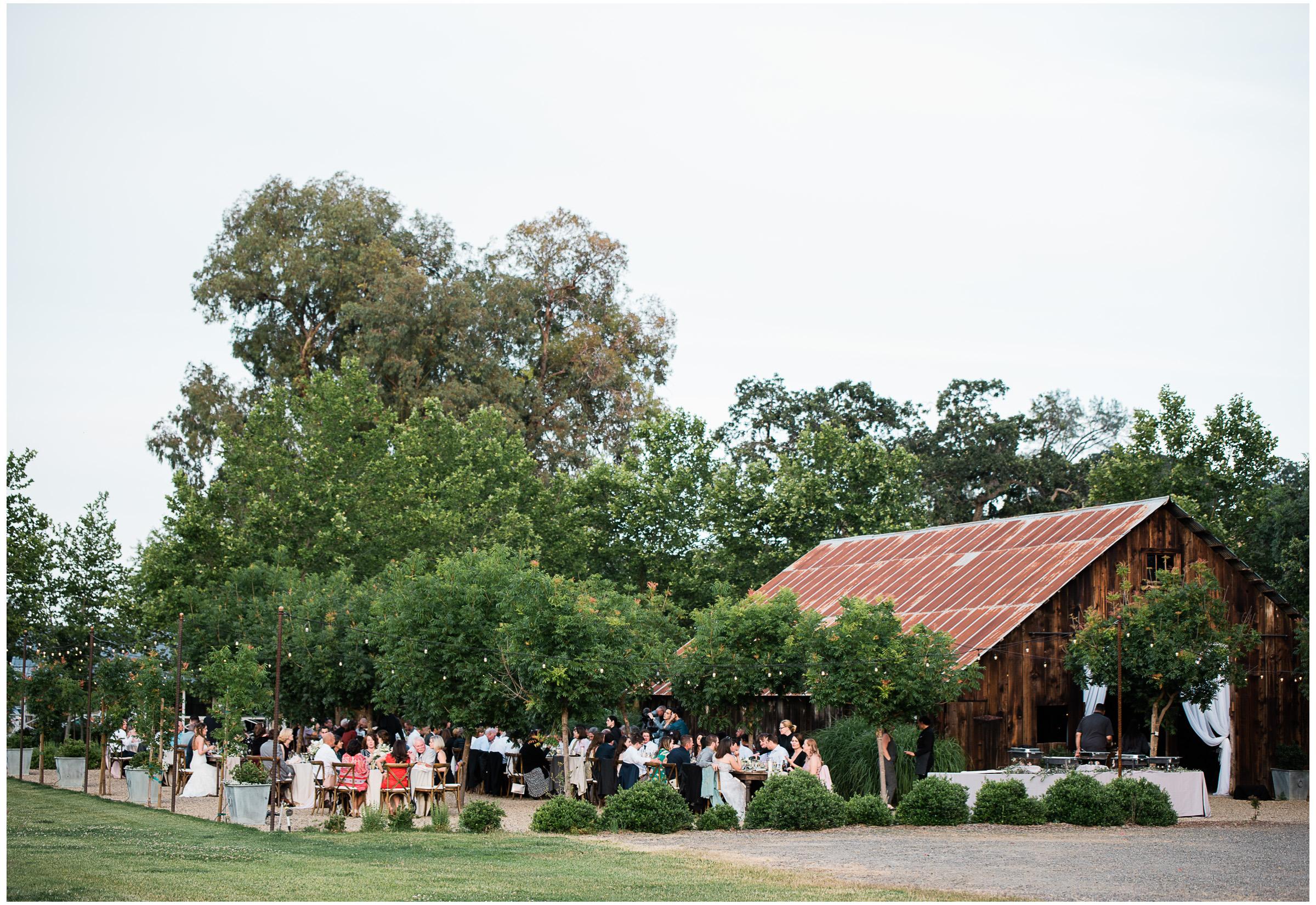 Winters Wedding - Sacramento Photographer - Field & Pond - Justin Wilcox Photography - 30.jpg