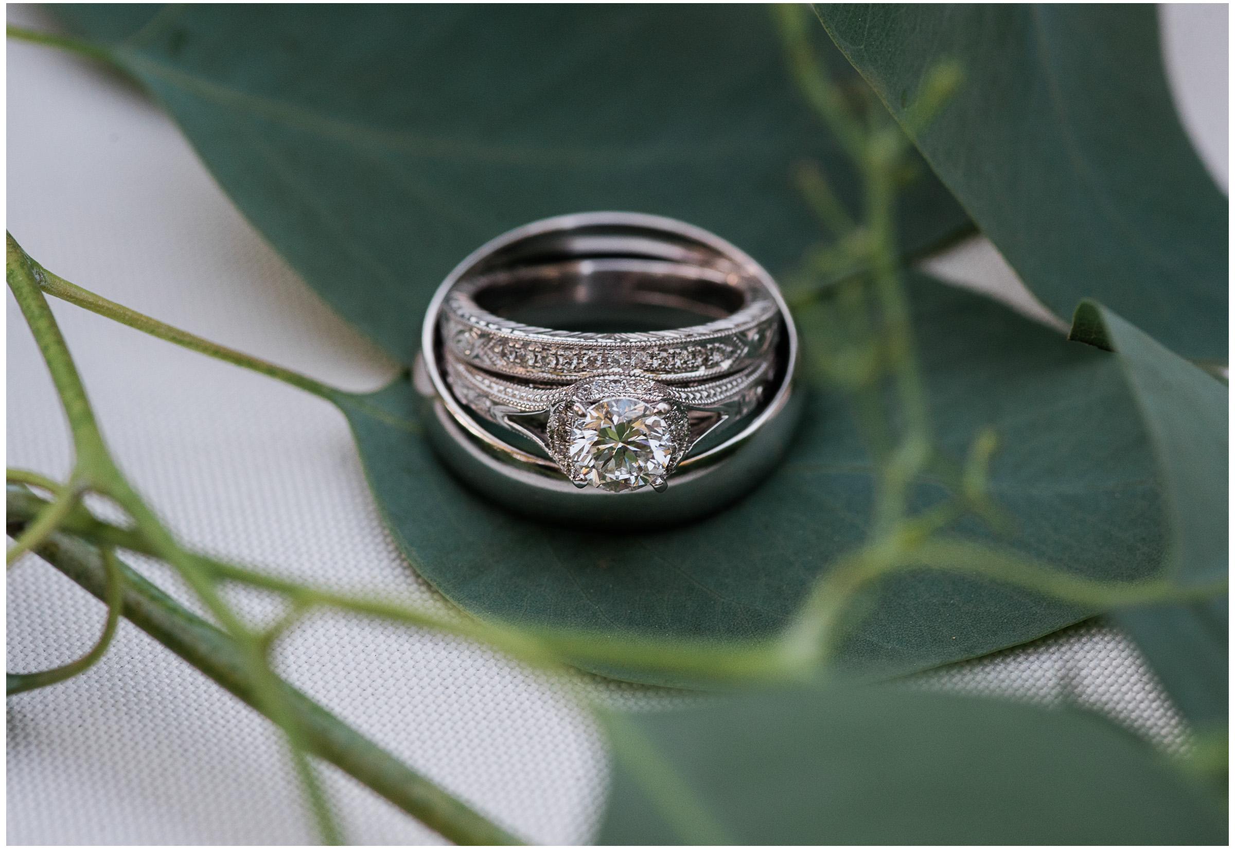 Placerville Wedding - Sacramento Photographer - Justin Wilcox Photography - 19.jpg
