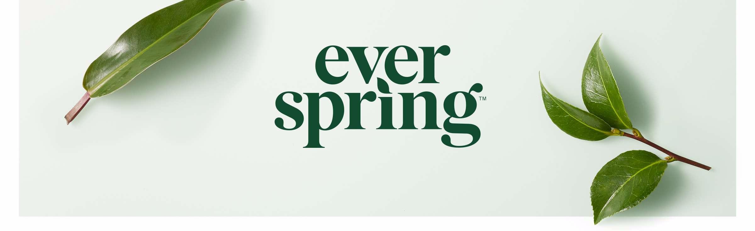 Everspring by Target