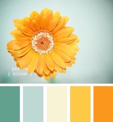 yellow-bloom.jpeg