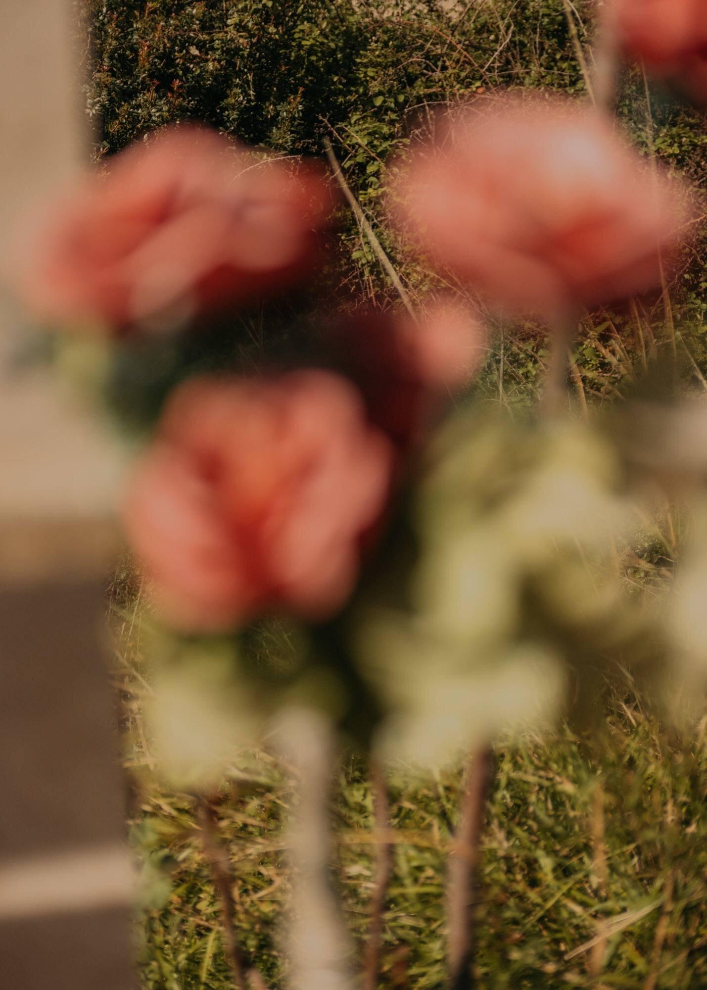 ignant-photography-maximilian-virgili-sardinia-8.jpg