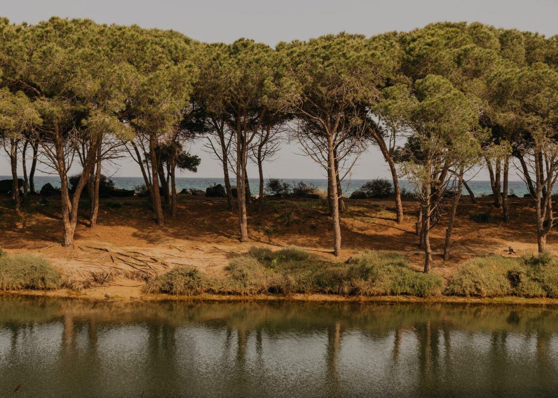 ignant-photography-maximilian-virgili-sardinia-24-1440x1028.jpg