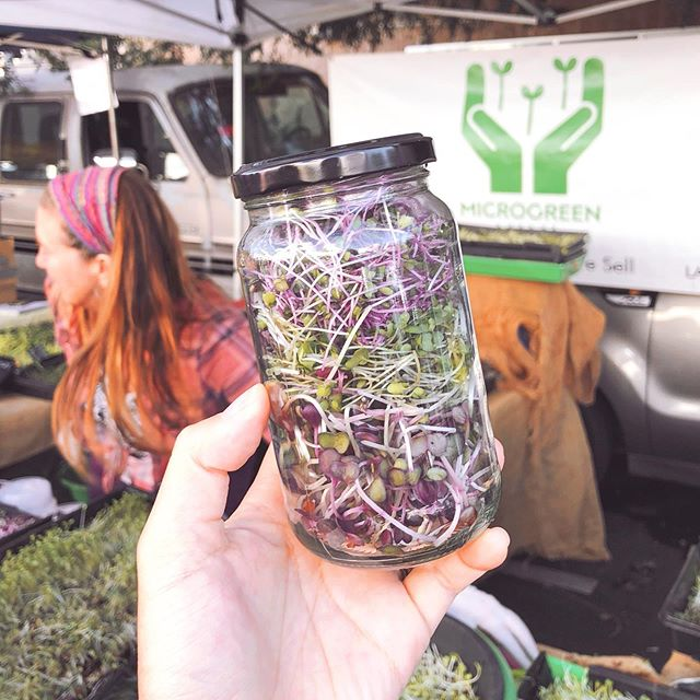 Locally grown organic microgreens in my own container from @microgreenmama at the Hollywood Farmers Market (@thehfm)! Laurette and I were both urban farmer interns who learned about beyond organic farming practices under @farmerrishi and @zerowastefarmer. I am so happy for her and her thriving microgreen business. She truly cares about growing the best microgreens and reducing waste! Please go support her and tell her I sent you :) And yes, she will fill your own container too! Or use a paper bag if you forget! #zerowaste #trashfreeinla #zerowastela