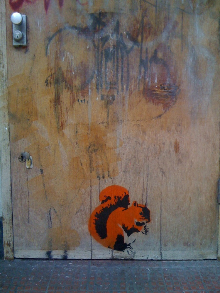 squirrel_hoxton.jpg