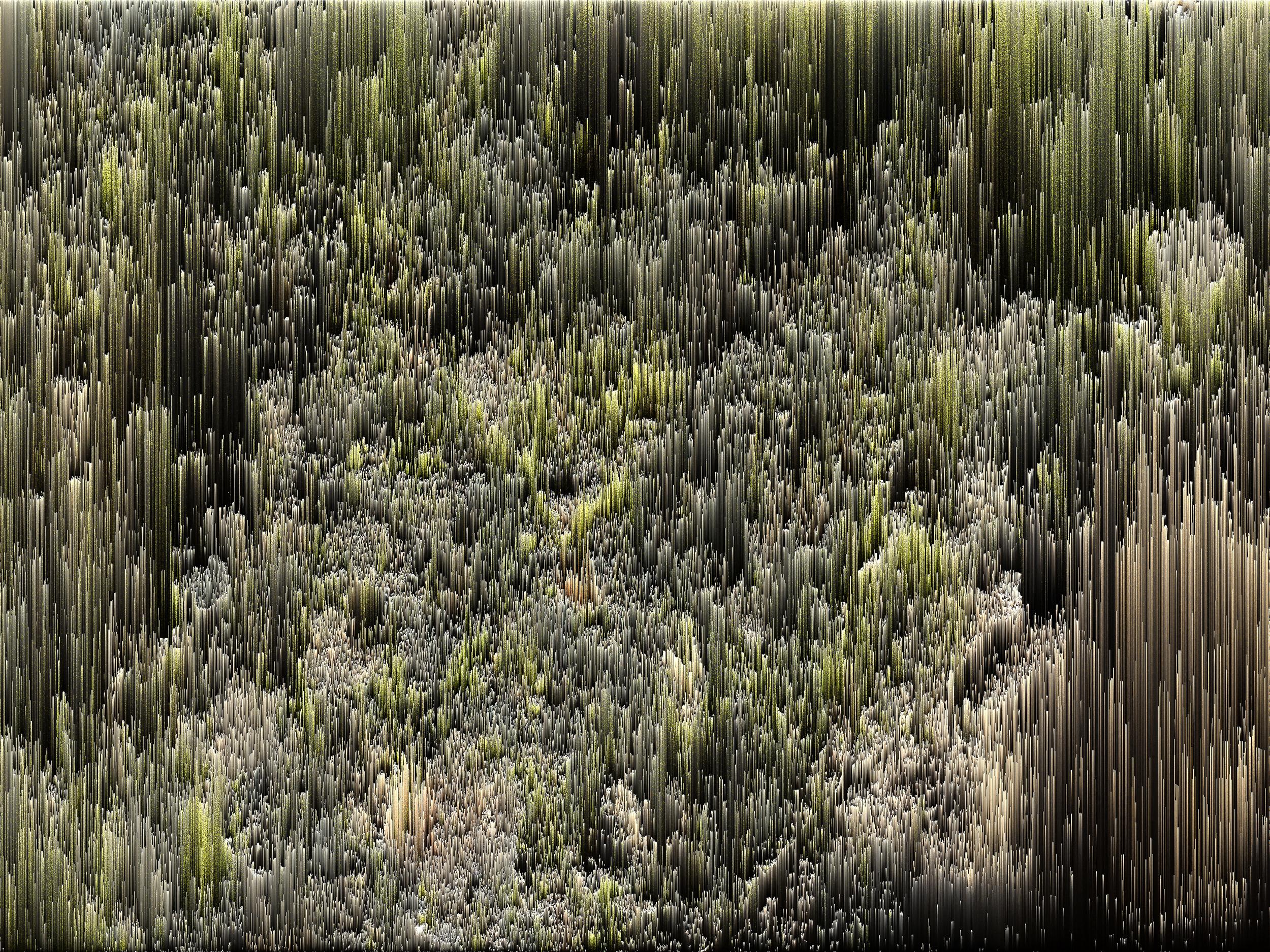 alban_guerry-suire_pixel_sorting-025.jpg