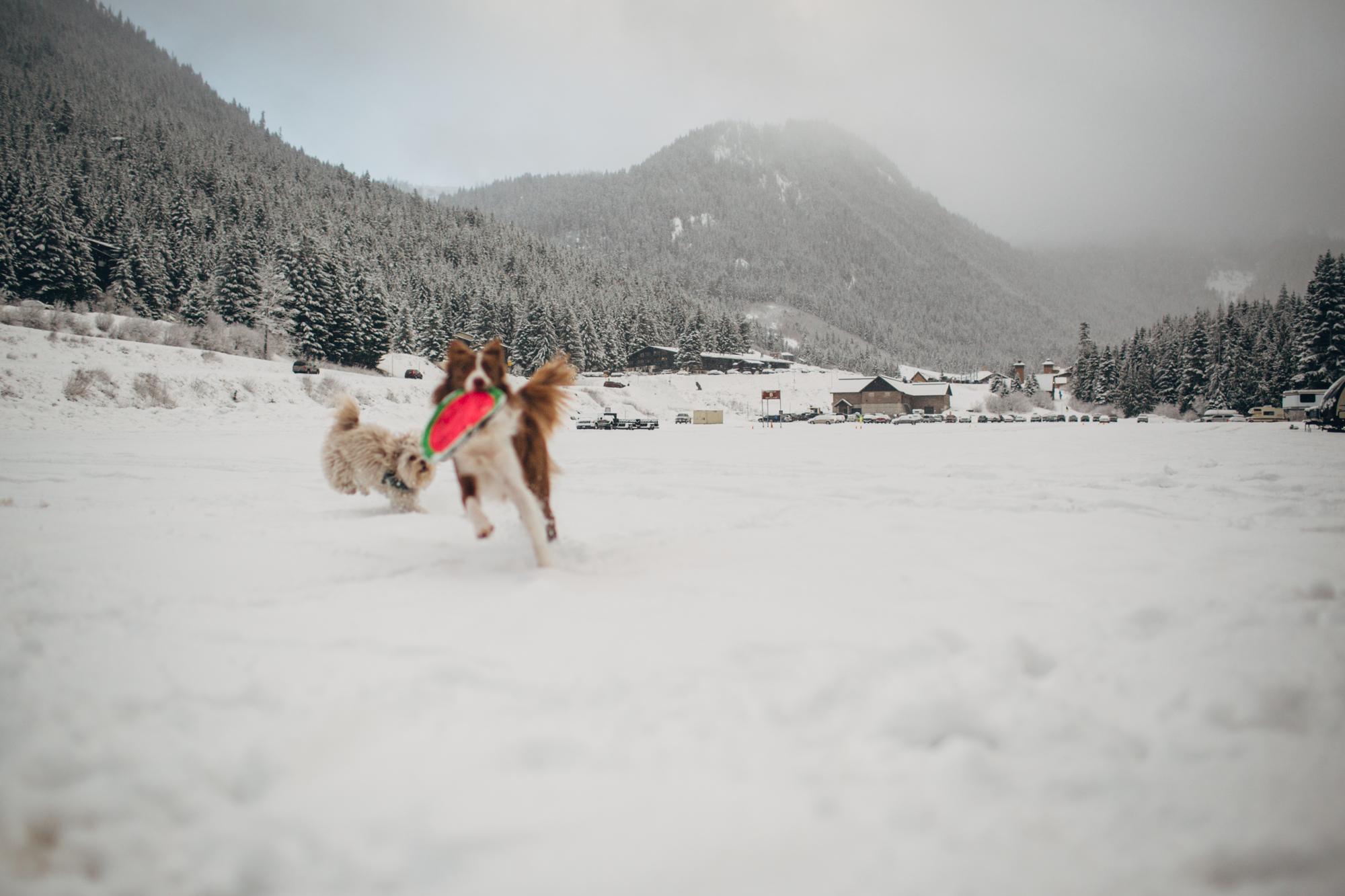 First Ski Day20150119-IMG_7536.jpg