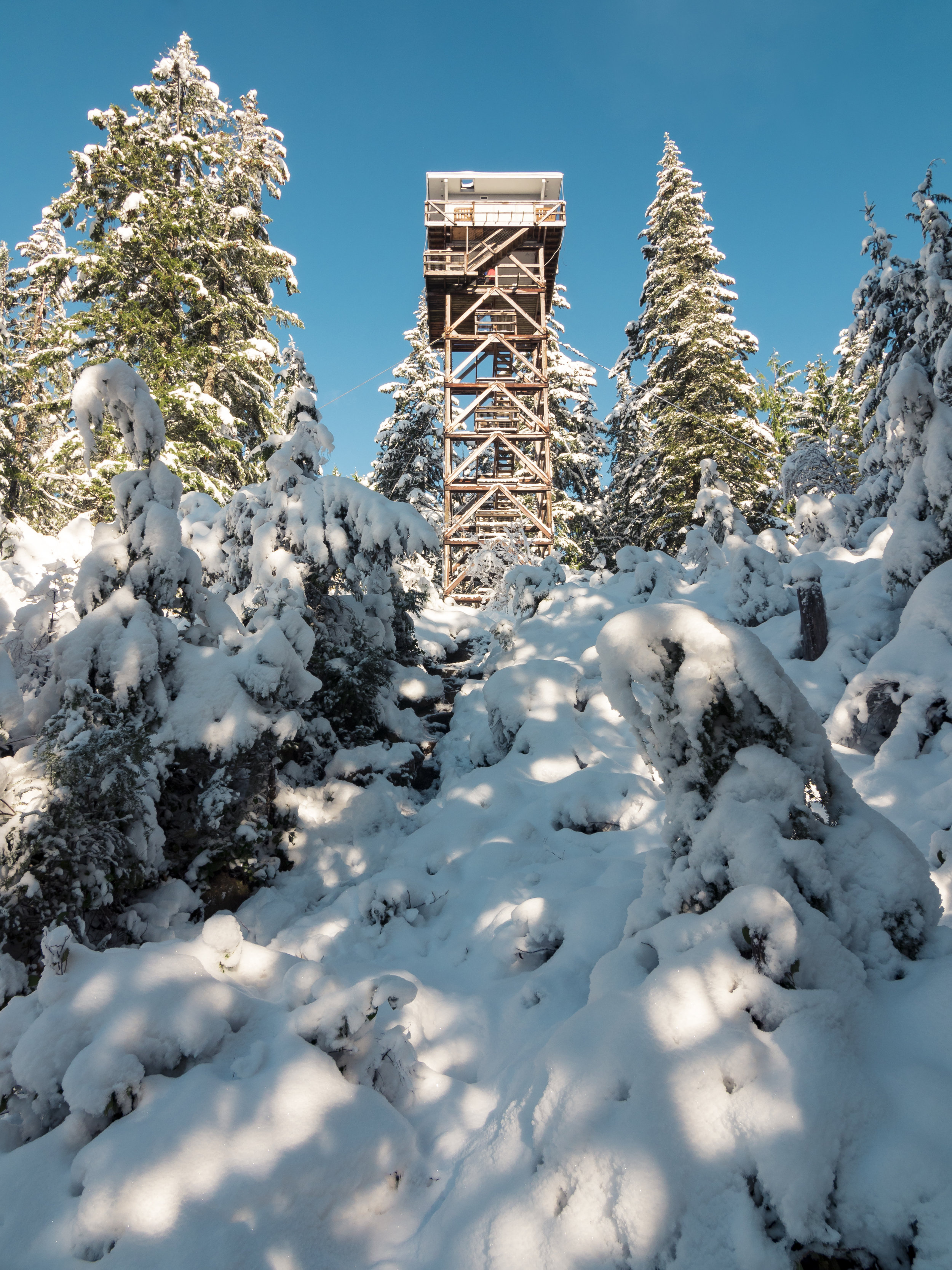 Looking Up at Tall Heybrook Mountain Lookout in Pacific Northwest