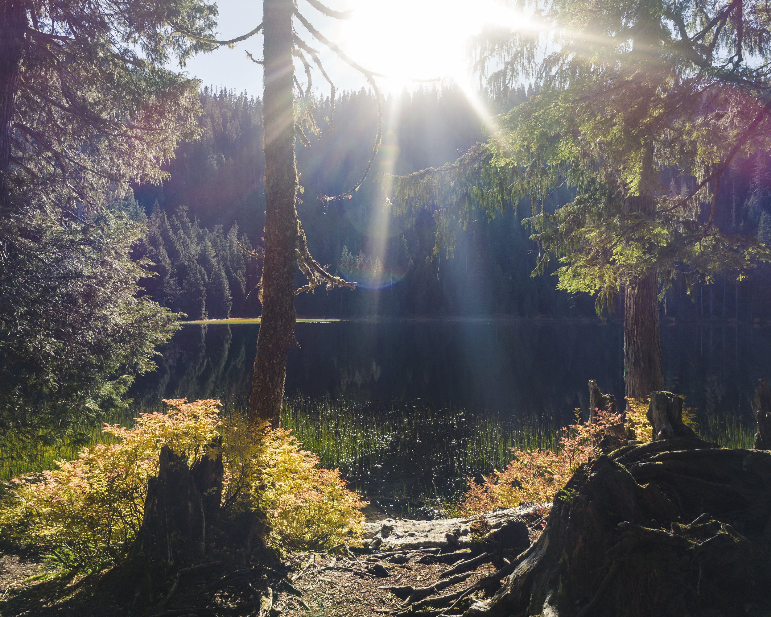Nature_Fall_Season_Background_of_Lake_with_Colorful_Sun_Lens_Flare.jpg