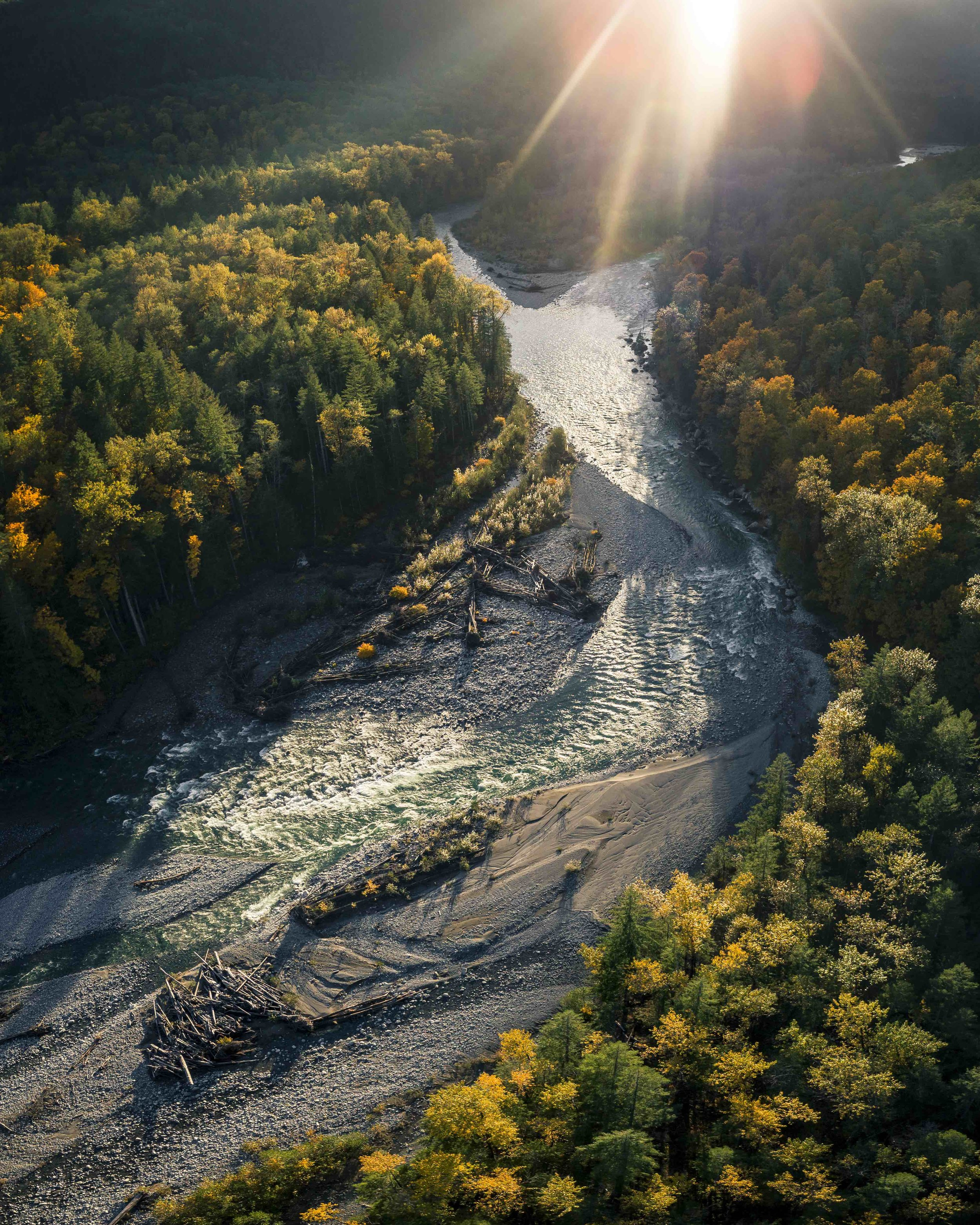 Fall_Season_Nature_Aerial_of_River_by_Colorful_Trees_with_Lens_Flare.jpg