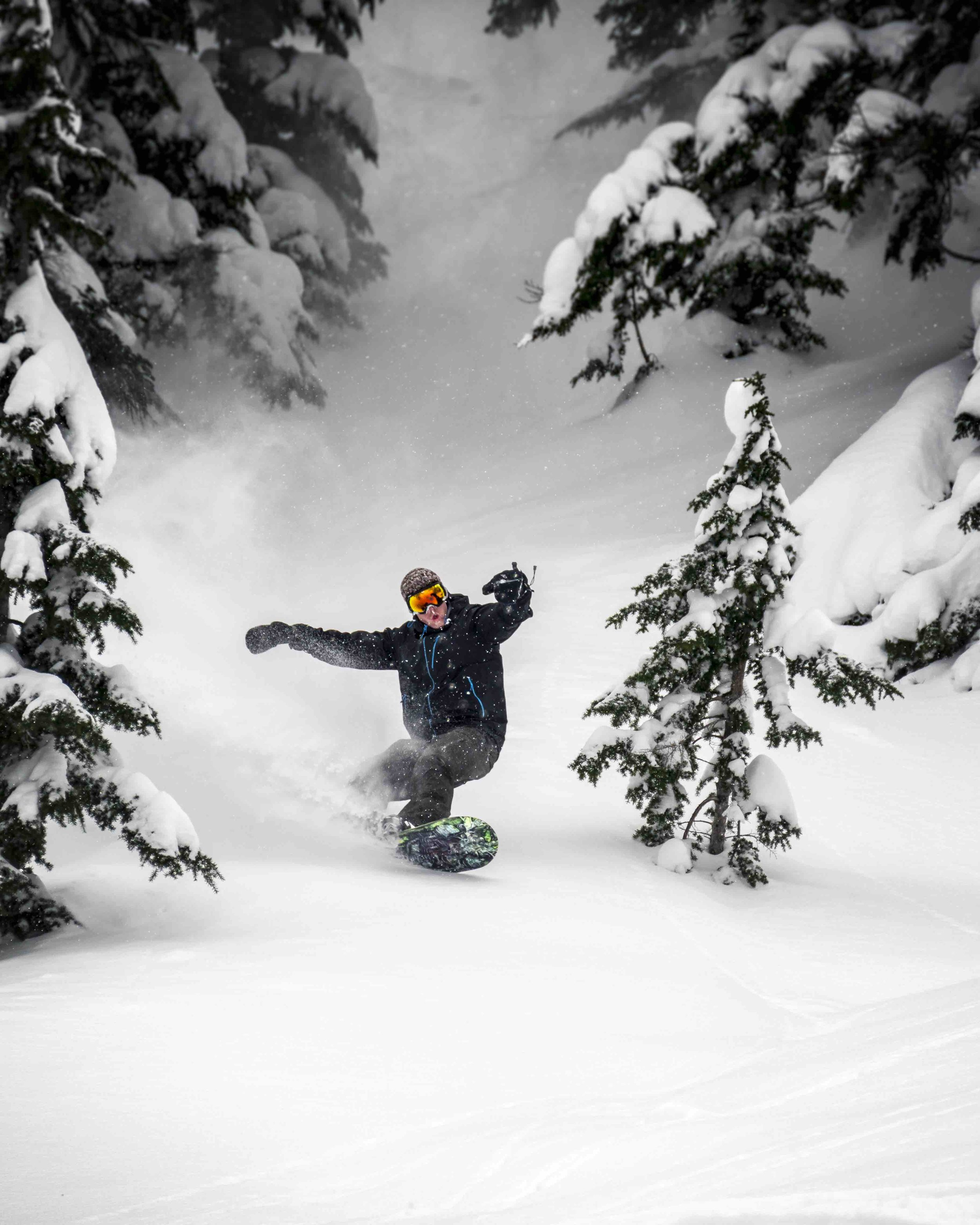 Snowboarder_Carving_Fresh_Powder_Spray_Through_Trees.jpeg