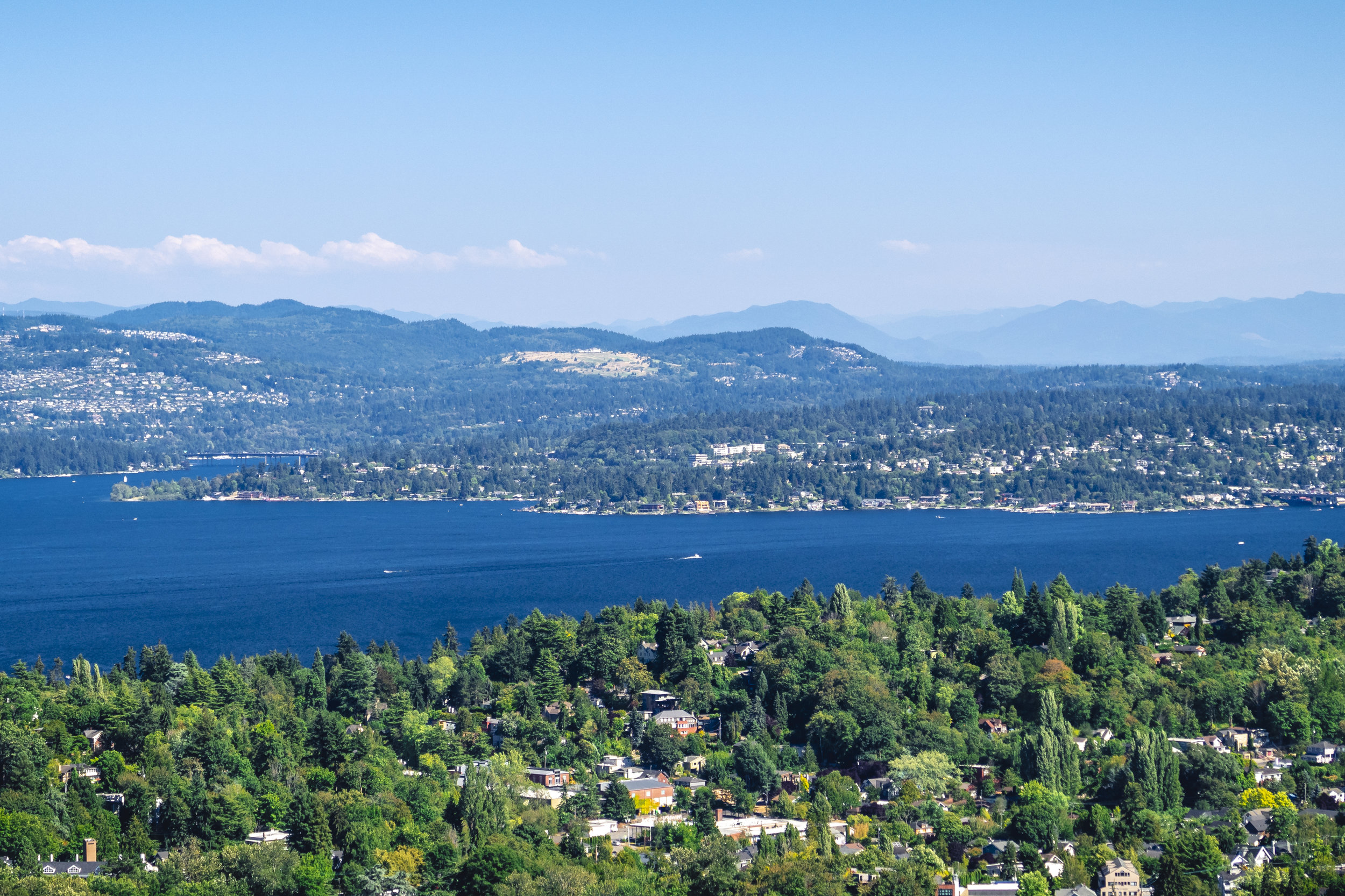 Evergreen_State_Lake_Washington_Summer_Aerial.jpg