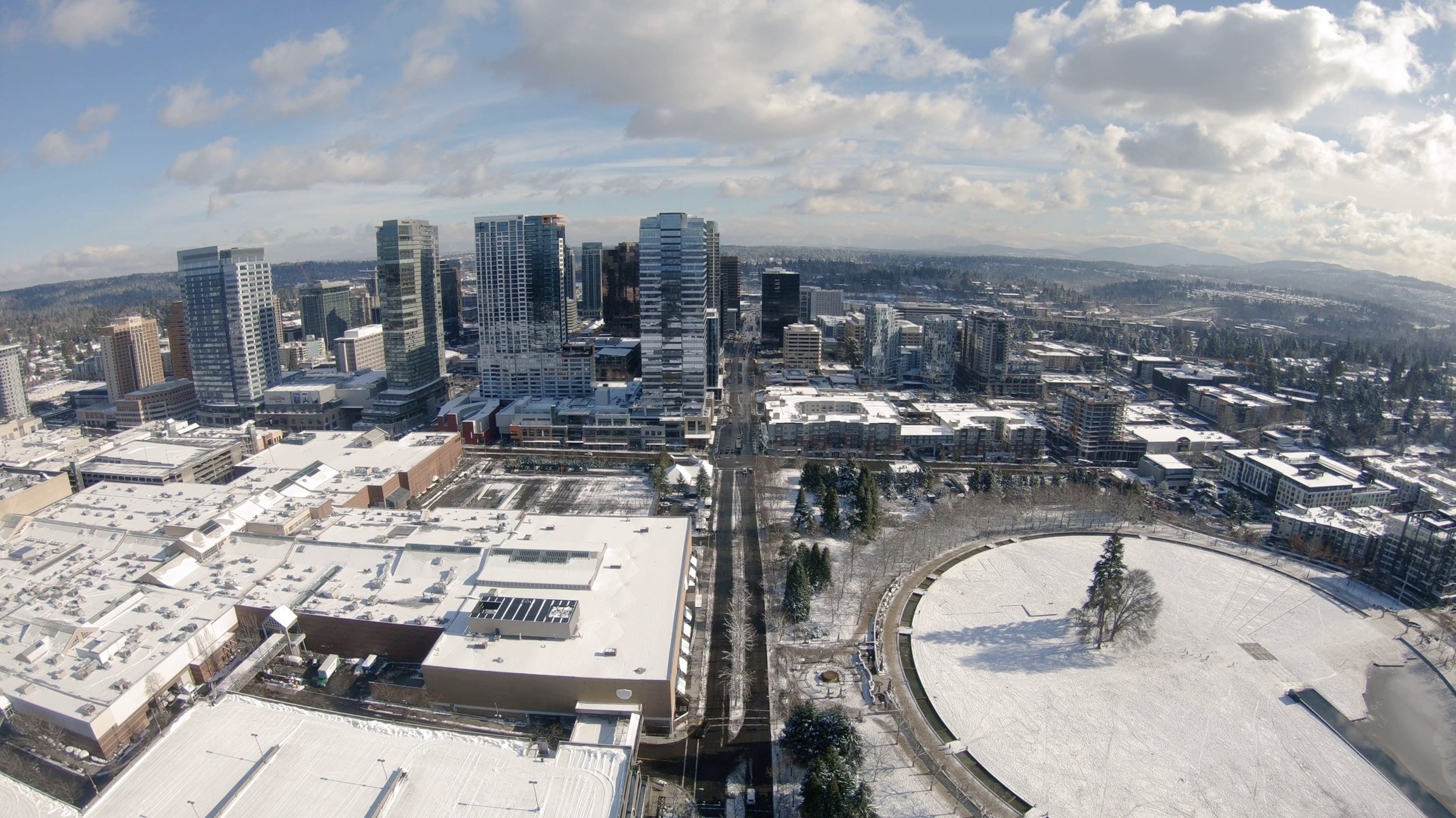 Bellevue_Park_Winter_Snow_Aerials.jpg