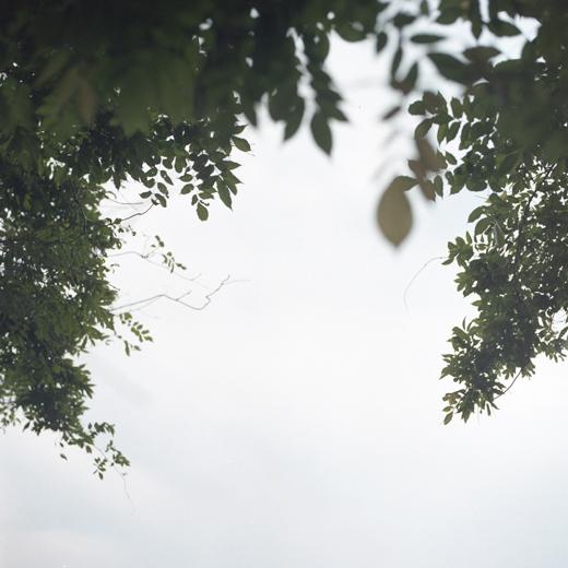 Debora-Francis-Pretty-Mysteries-05.jpg