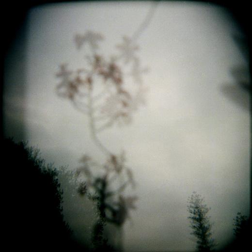 Debora-Francis-Pretty-Mysteries-19.jpg