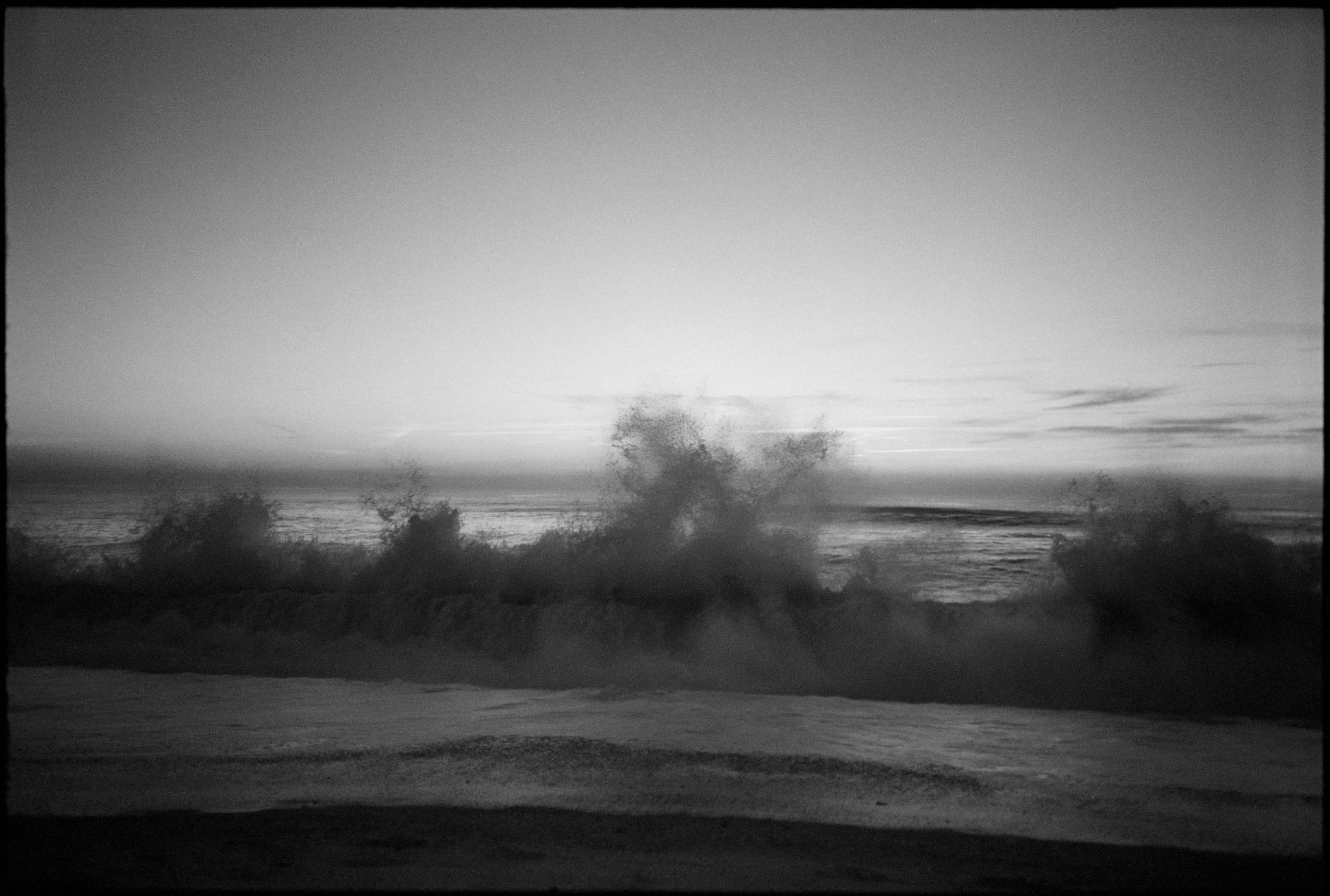 Debora-Francis-Landscapes-01.jpg