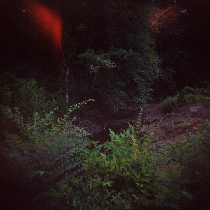 Debora-Francis-Landscapes-06.jpg
