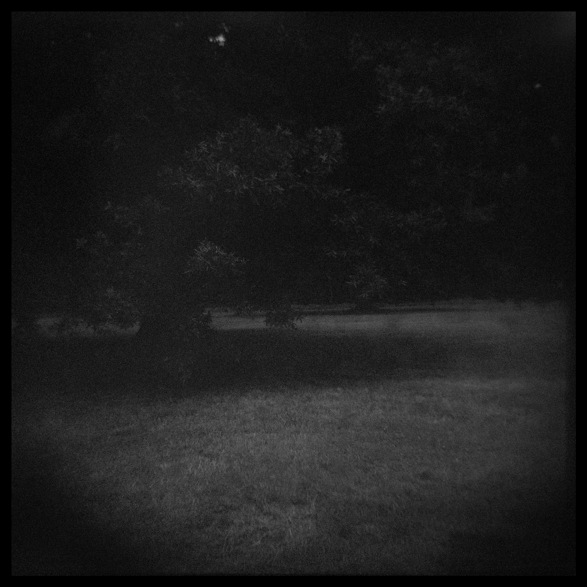 Debora-Francis-Landscapes-19.jpg