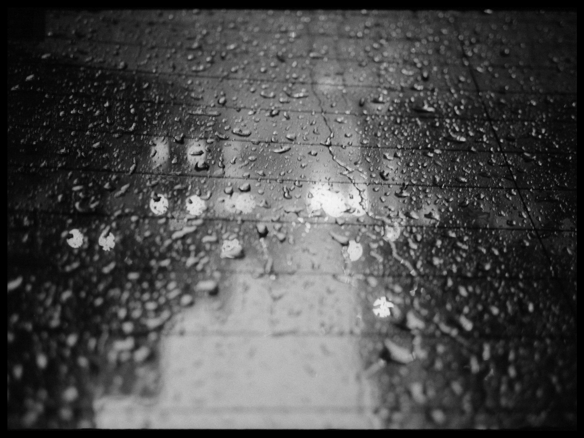 Debora-Francis-Little-Moments-1-01.jpg