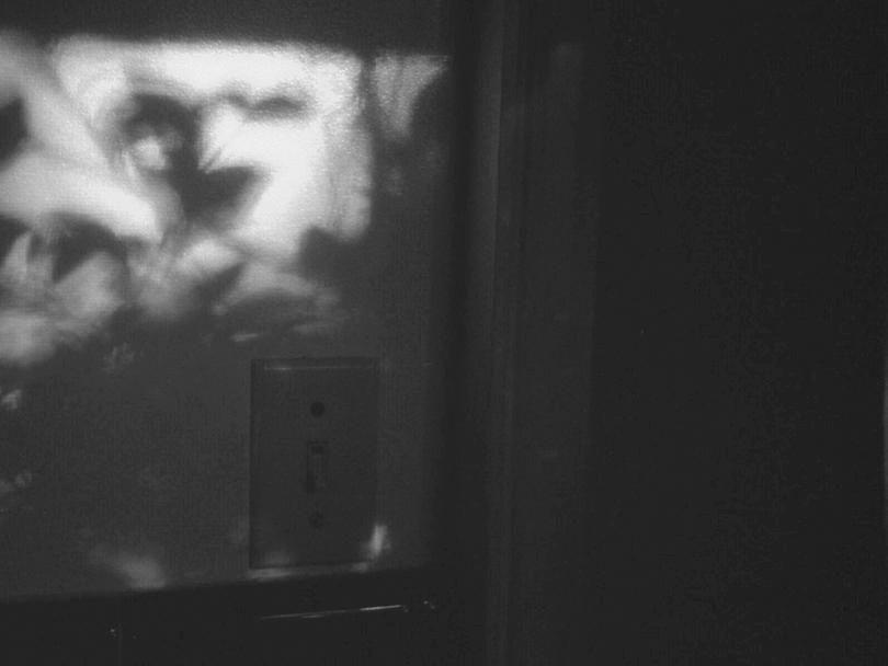 Debora-Francis-Little-Moments-1-14.jpg