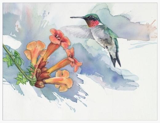 Hummingbird's Trumpet