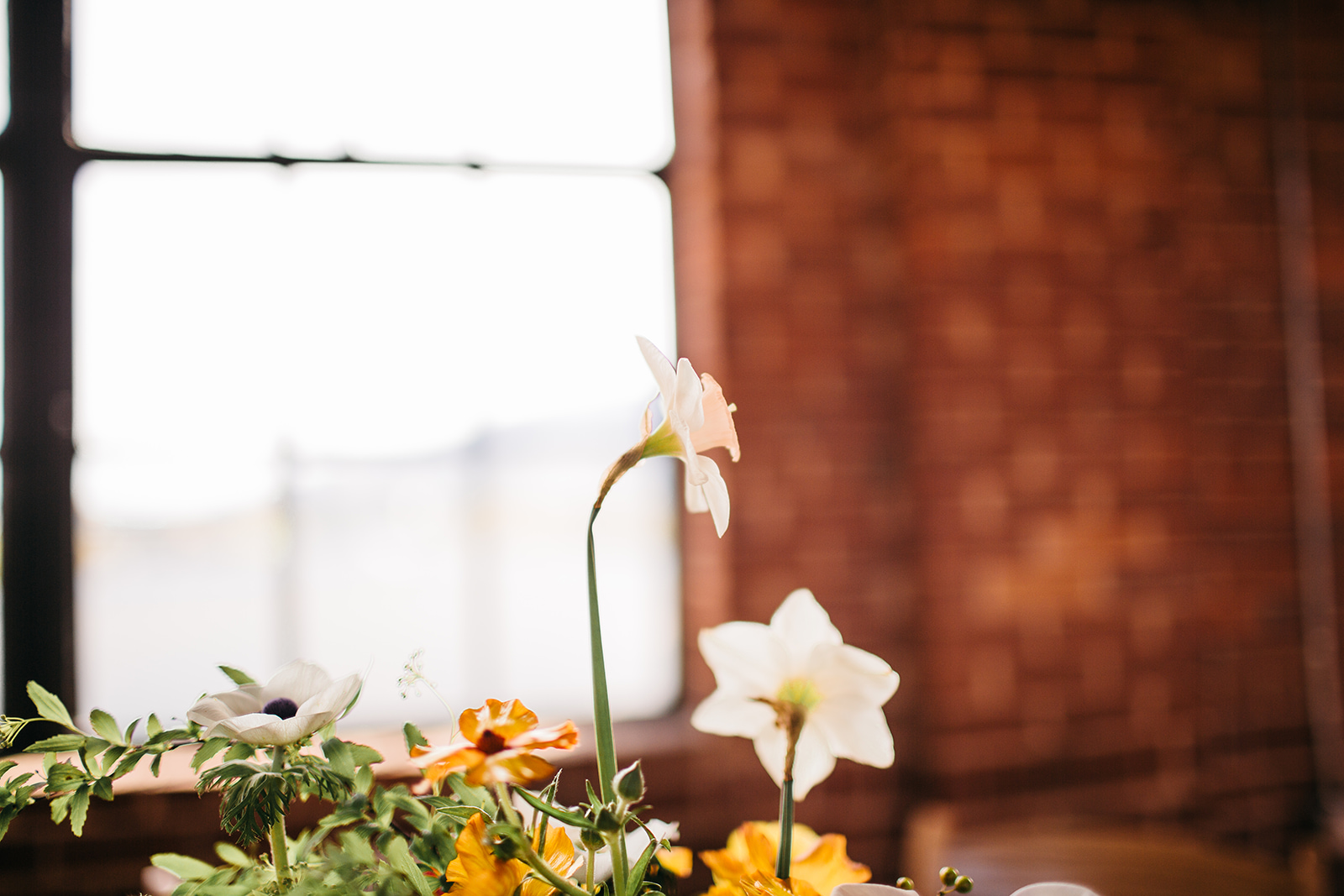 Shannon _ Todd Wedding FINALS-554.jpg