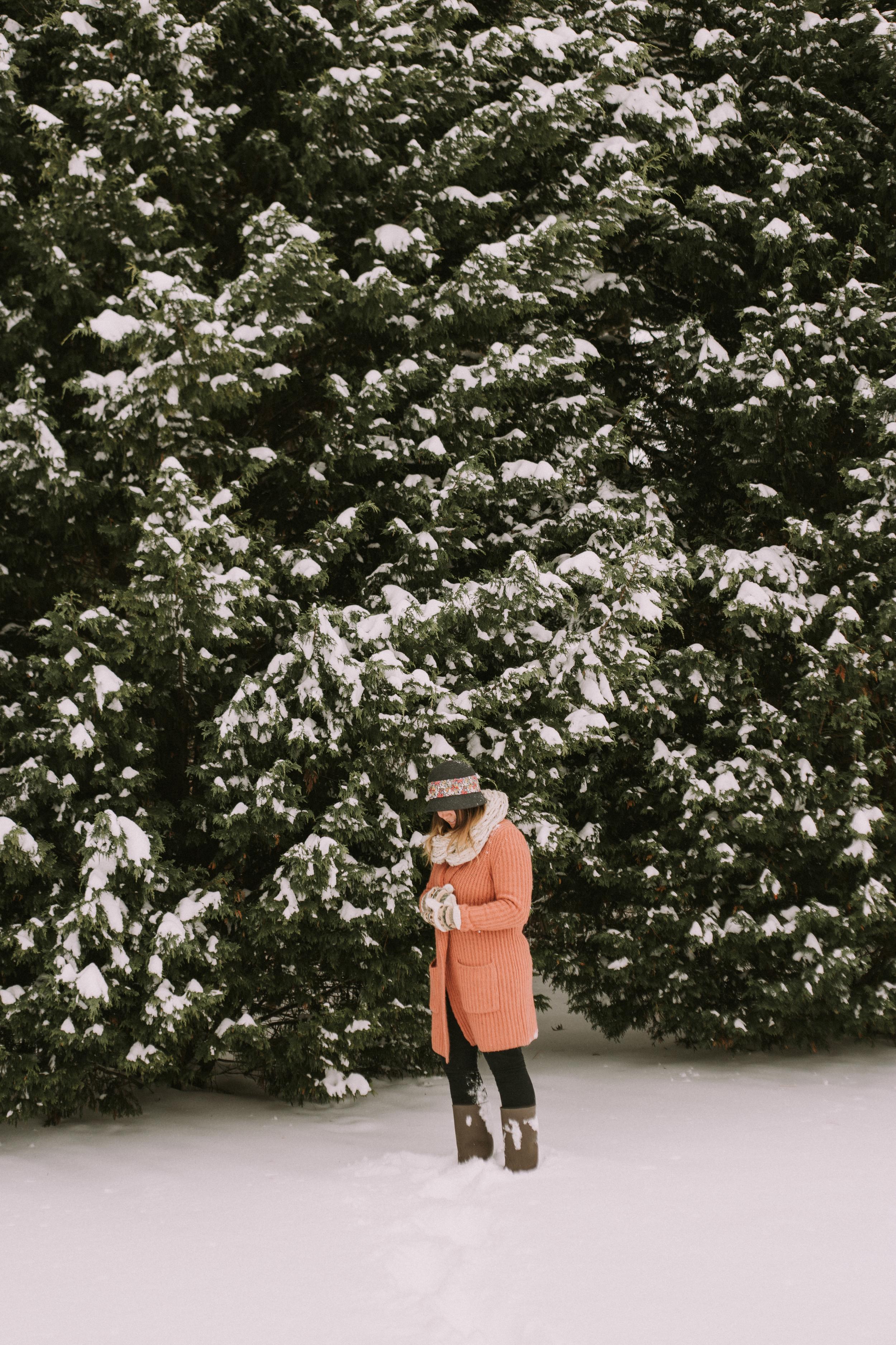 2015 january snow weekend 045-2.JPG