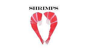 logo_shrimps.jpeg