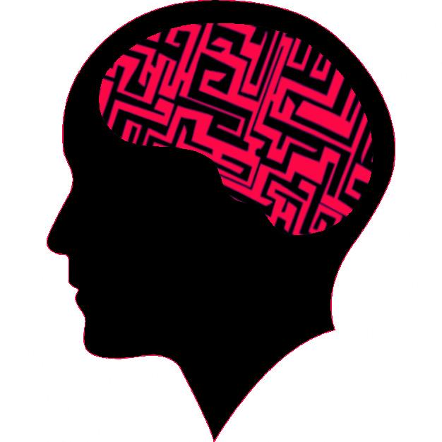 brain loves habit