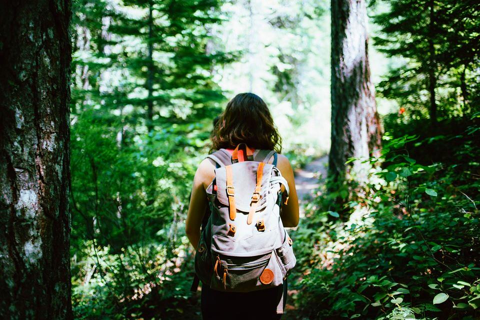 hiking exercise