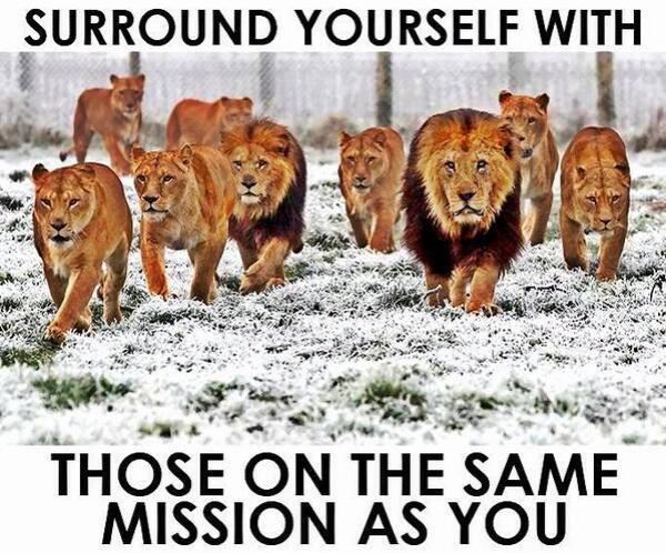 surround yourself with those on the same mission