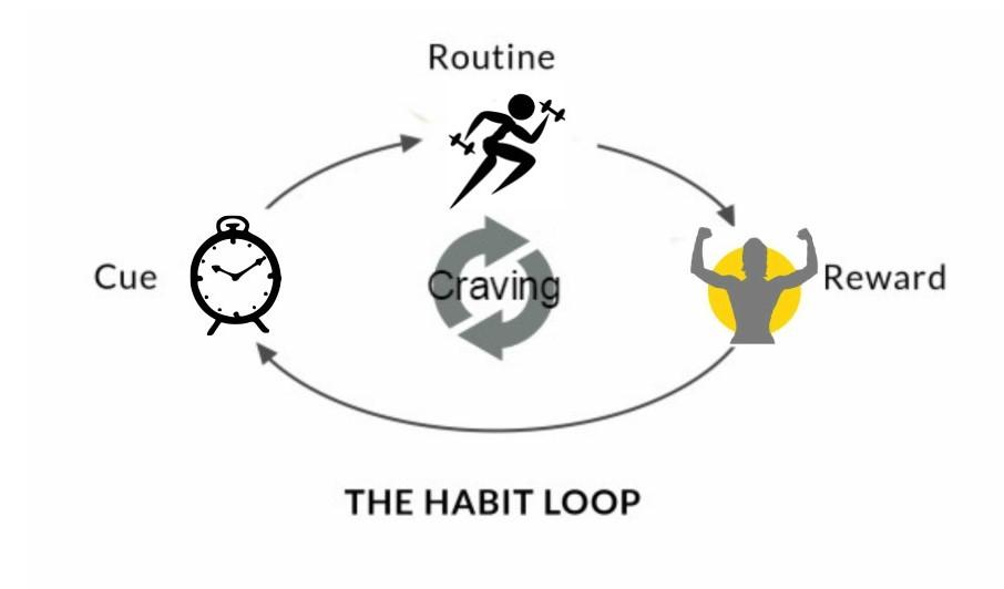 exercise habit loop