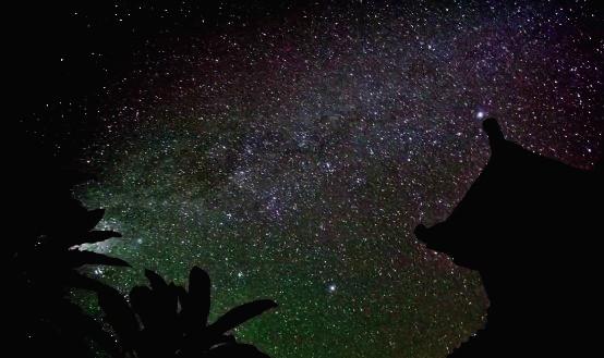 Milky Way at Nyepi