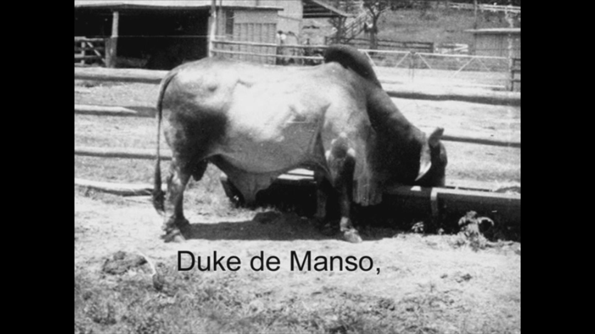 Duke De Manso 2.jpg