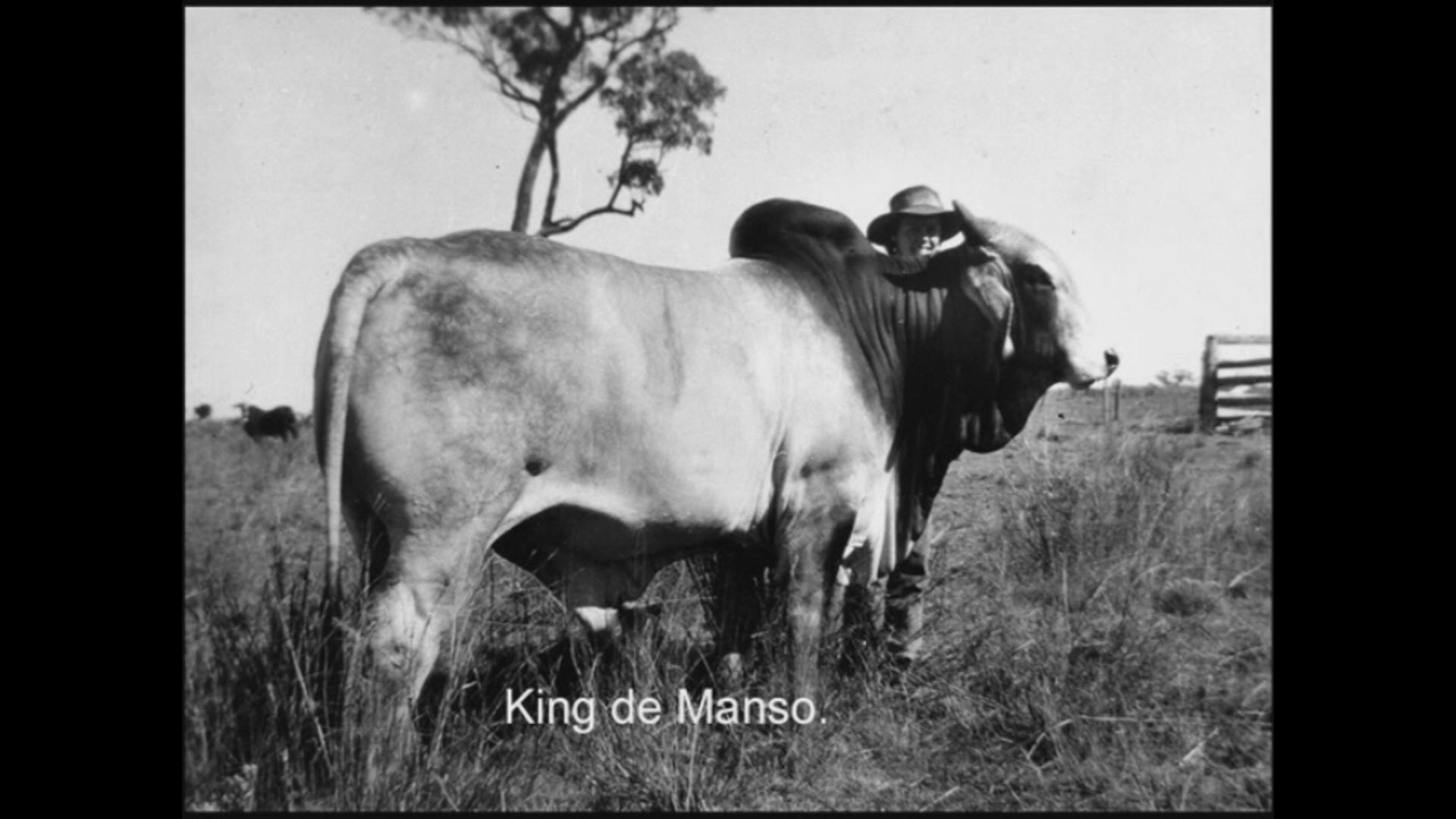 King De Manso.jpg
