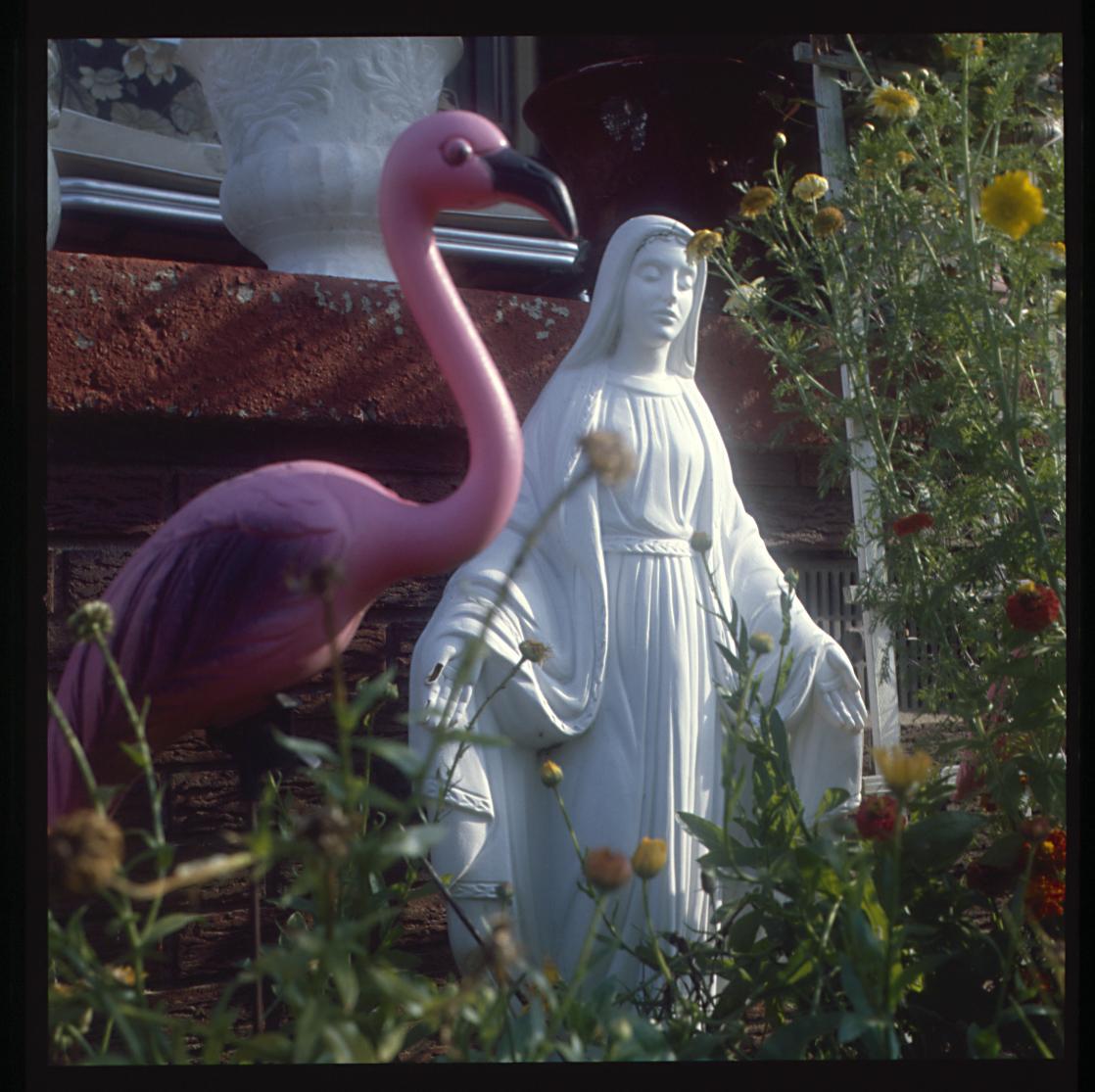 marlos_1987_madonna_flamingo.jpg