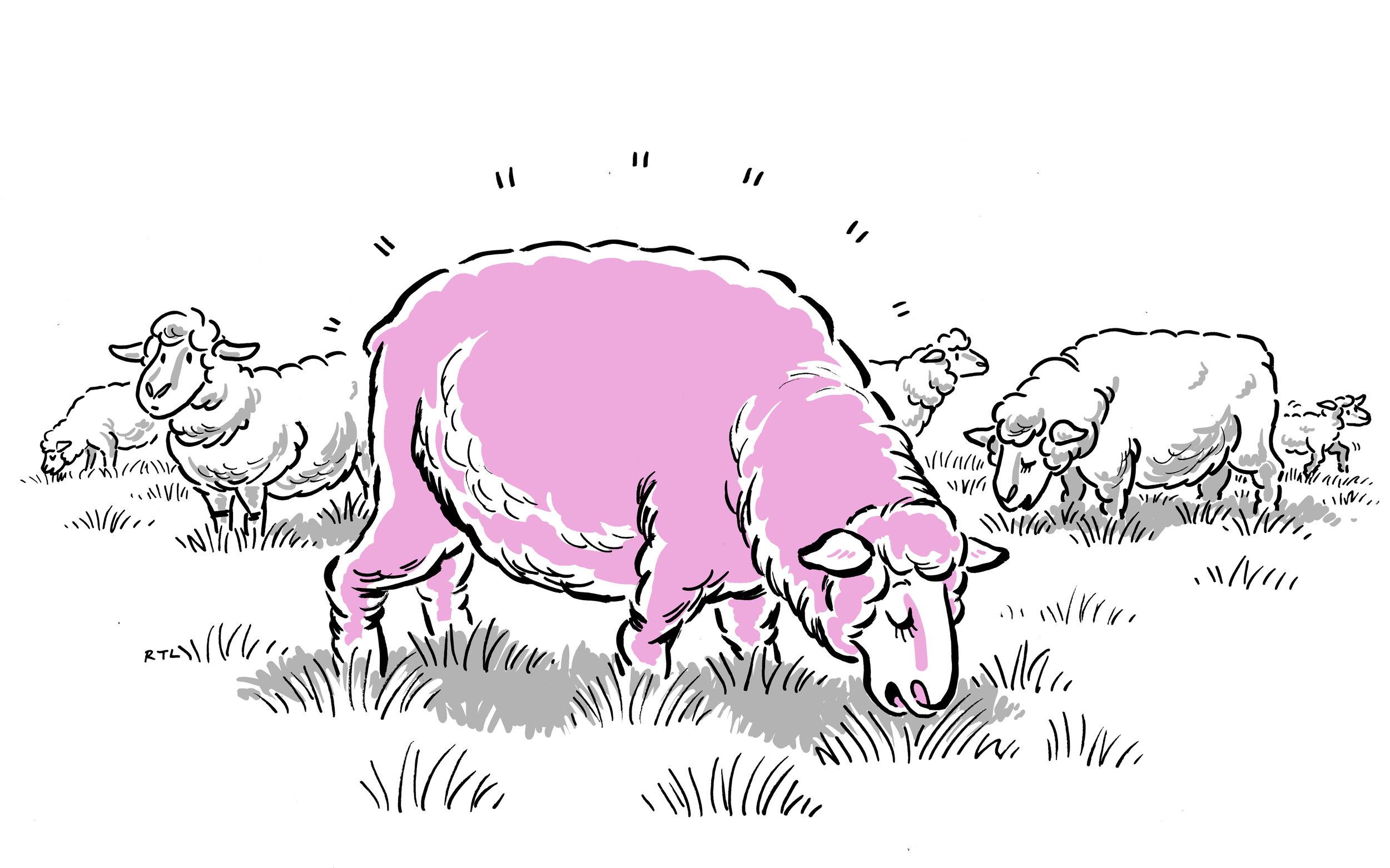 cartoon-07_BW_A1.jpg