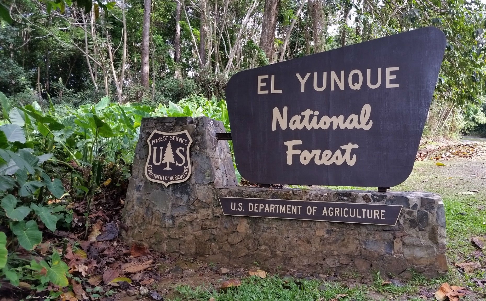 El Yunque is part of the U.S. National Parks system, and is home to the only rainforest in the system.