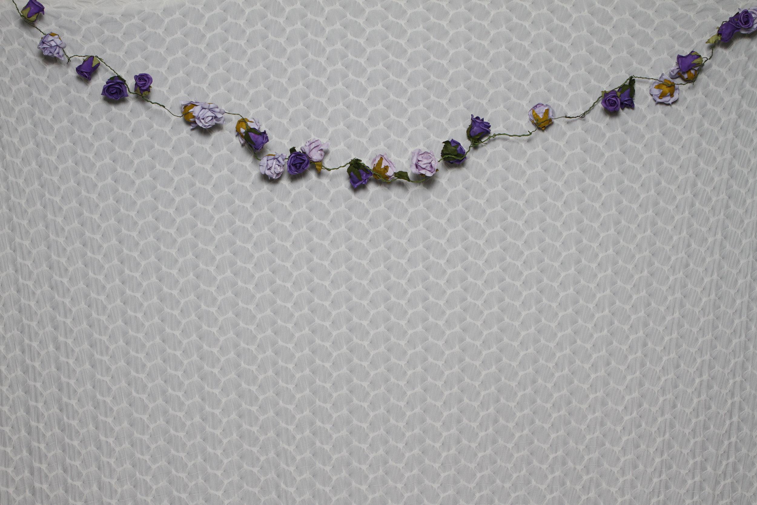 White Ruffles Purple flowers