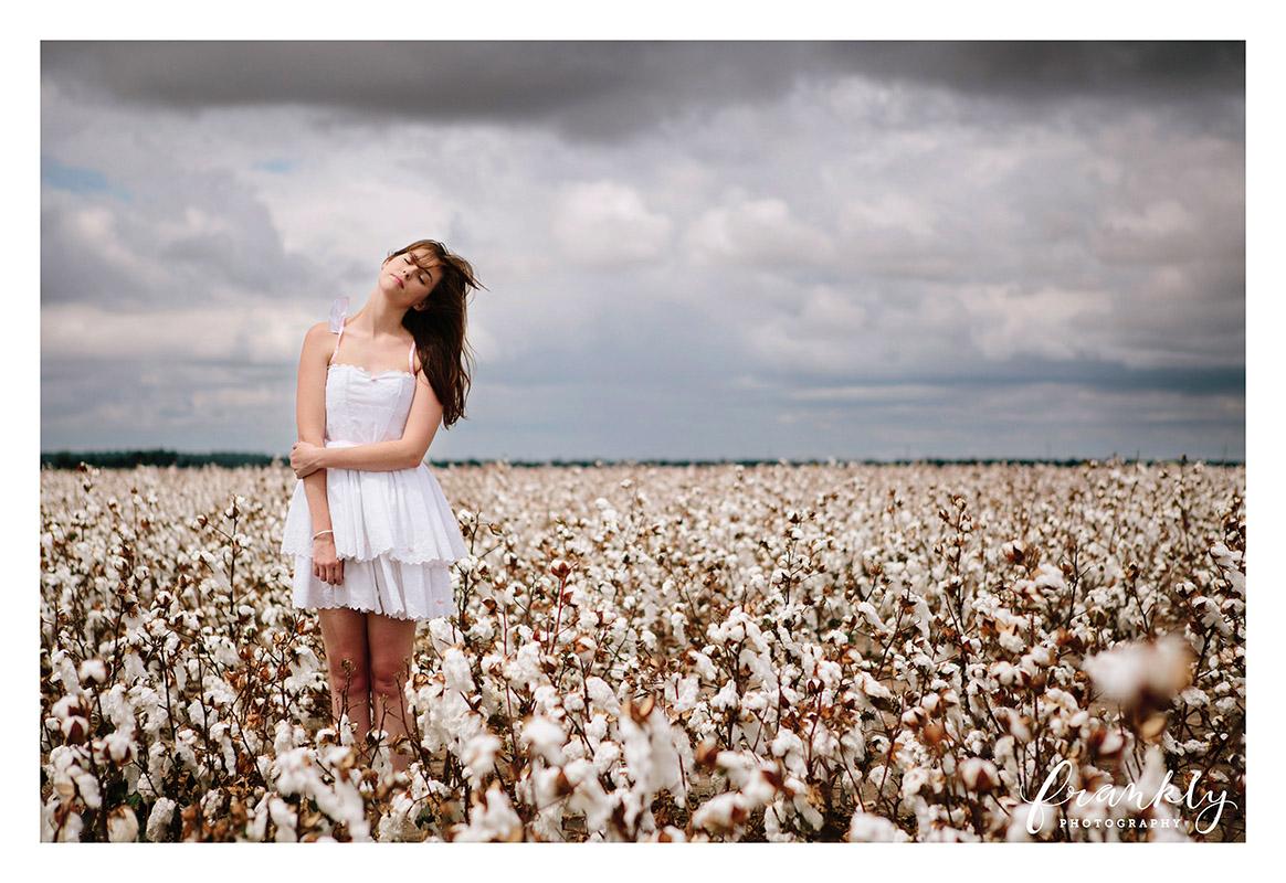 cotton-274-2 copy.jpg