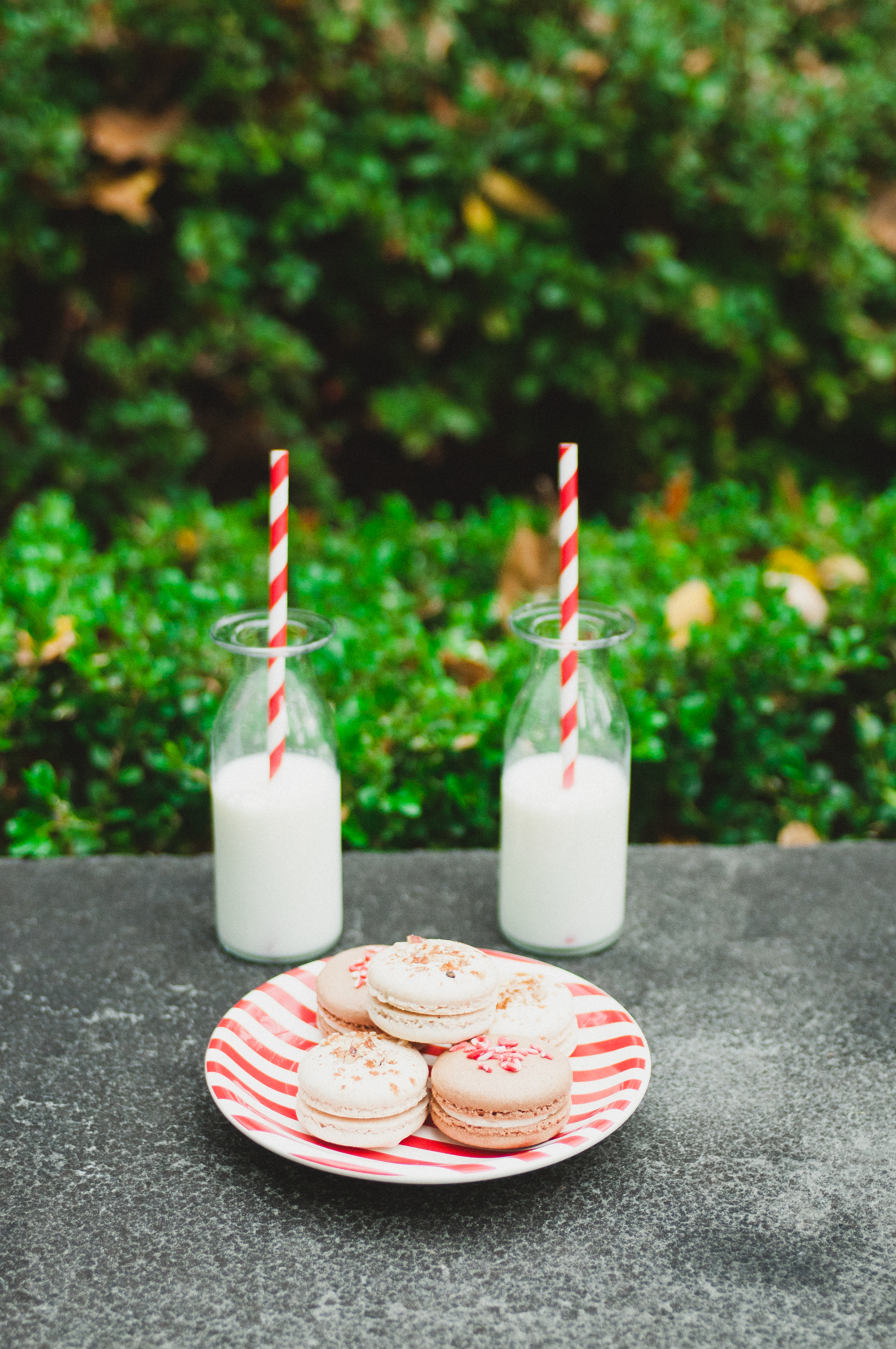 macarons and milk, christmas pictures, christmas engagements