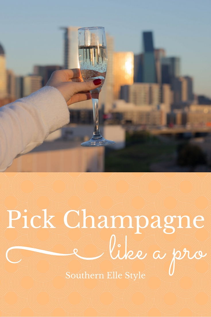 how to pick champagne like a pro, day dreamer champagne s'il vous plait, southern elle style