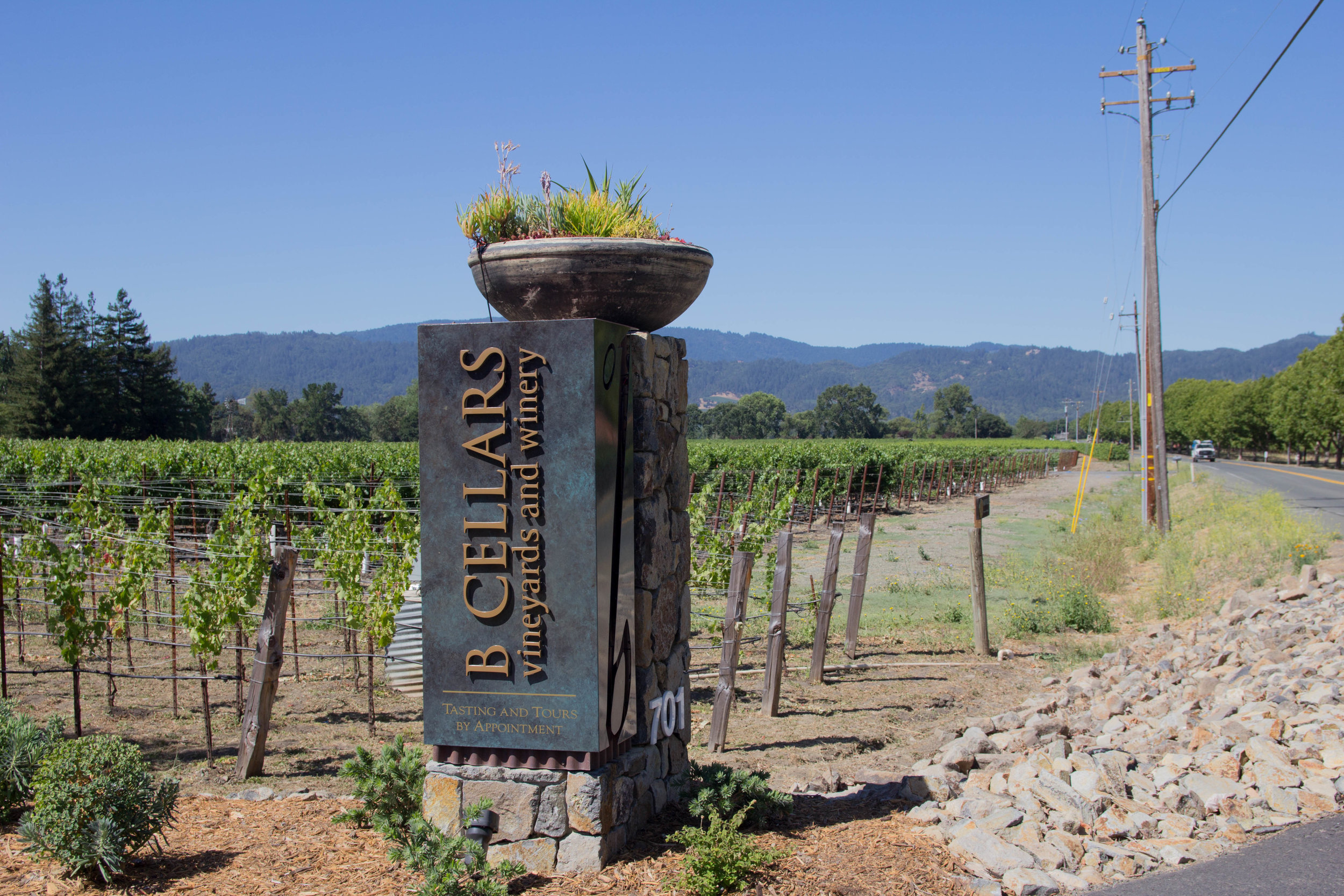 napa, napa valley, california, wine country, 24 hours in napa, what to do if you only have 1 day in napa, where to wine taste in napa, B Cellars, food and wine pairing