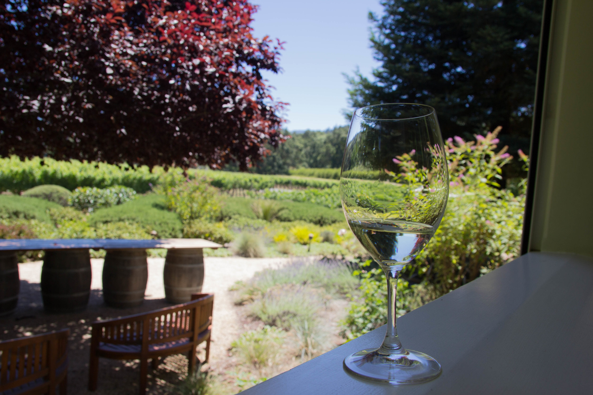 napa, napa valley, california, wine country, 24 hours in napa, what to do if you only have 1 day in napa, where to wine taste in napa, duckhorn winery, merlot