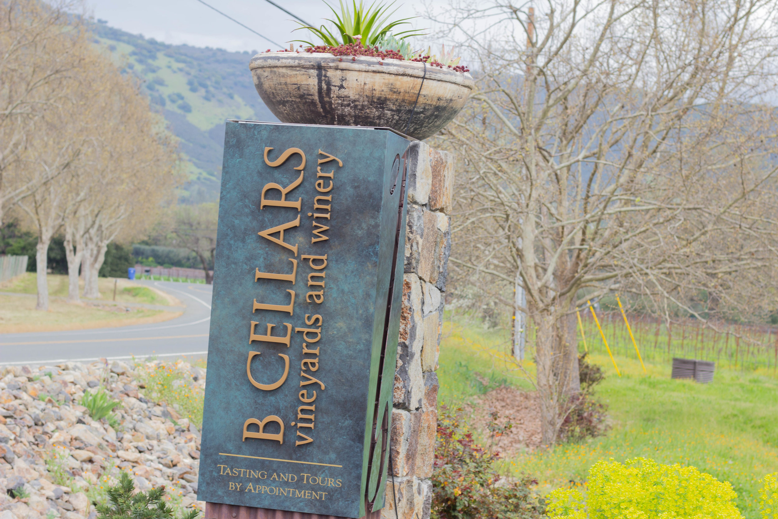 b cellars, tips for wine  tasting in napa valley, sonoma, napa, visit california, wine tasting tips, san francisco, oakland,